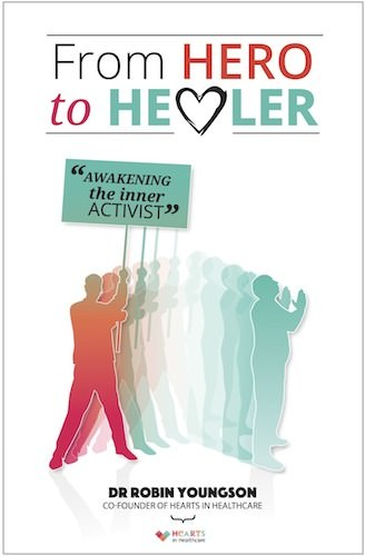 Hero to healer book cover 500px border